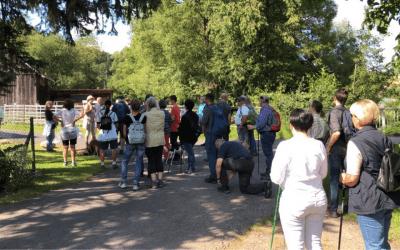 Wandern mit Beck: Oh schönes Kassel!